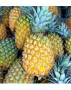 Colis Ananas Reunion - Produits de la Reunion - boutique réunion
