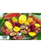 Colis Fruits Reunion  - Produits de la réunion