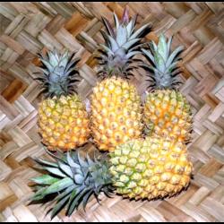 Colis ananas victoria...