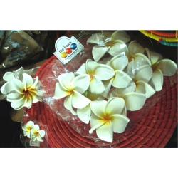 Chouchou fleur de frangipanier
