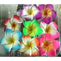 Pince couleur fleur de...