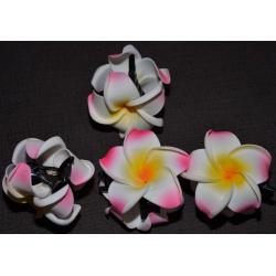 Pince fleur de frangipanier...