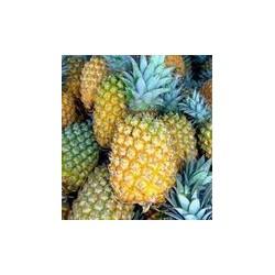 Colis Ananas Reunion...