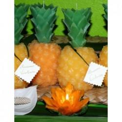Bougie ananas parfum Cèdre