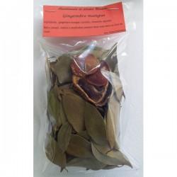 Preparation rhum arrange gingembre mangue