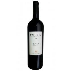 VINO TINTO CAUDUMEl vino tinto Caudum esta elaborado por uva tempranillo y pertenece a la DOC Rioja Este vino tiene una crianza