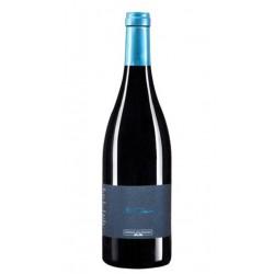 Vino Tinto El Musico Prieto PicudoldquoEste vino se elabora al 100 con la variedad unica y autoctona prieto picudo y tiene una