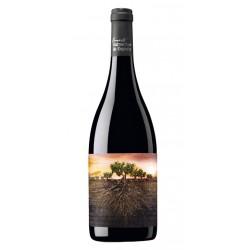 VINO TINTO GARNACHA OLVIDADA DE ARAGoNEl vino tinto Garnacha Olvidada de Aragon esta elaborado con 100 Garnacha y pertenece a l