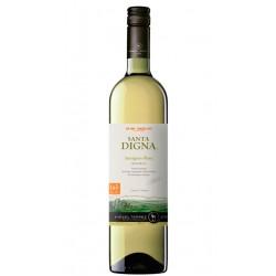 VINO BLANCO SANTA DIGNA RESERVA SAUVIGNON BLANC 2012Forma parte de la DO Chile Valle CentralEl producto se ha certificado como