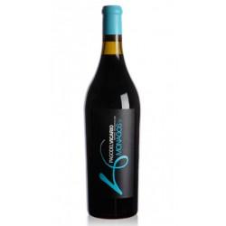 Bodega Pago del Vicario nos presenta este vino de CastillaLa Mancha Espana creado a partir de uvas Syrah y Garnacha y presentad