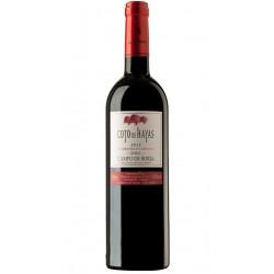 El vino Tinto Coto de Hayas Roble elaborado a partir de las variedades Tempranillo y Cabernet SauvignonProcedente de uvas selec