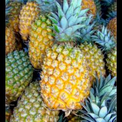Colis Ananas et Rhum...